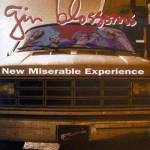 Used CD Compact Disc - Gin Blossoms - New Miserable Experience - CDs Record Album